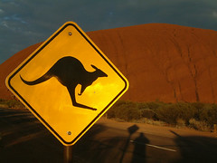 kangaroo_crossing | by hayduke23