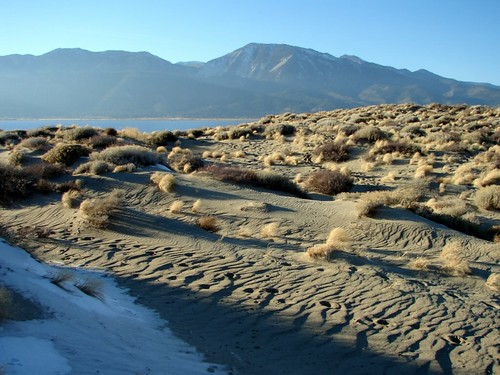 Desert Dunes in Winter | by RickC