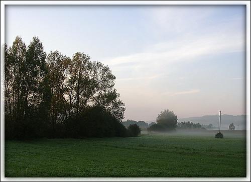 Maglovito jutro