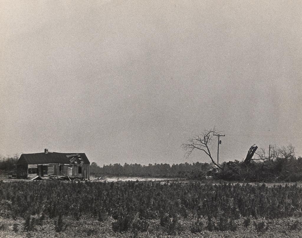 Rural Landscape, outside Augusta GA, 1970s