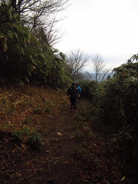 氷ノ山トレラン (13)