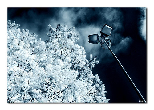 Infrared #1 | by :: Guto ::
