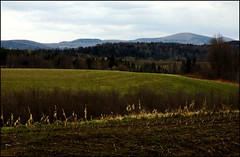 Vermont fields & hills | by colorstalker