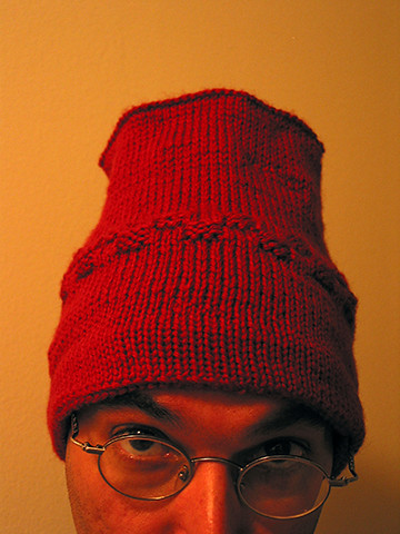 Susan's Toque, Completed | by panopticon