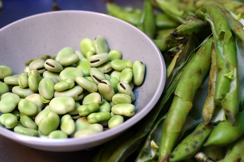 favas, out of their pods | by smitten kitchen