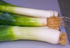 Leek Stalks | by LollyKnit