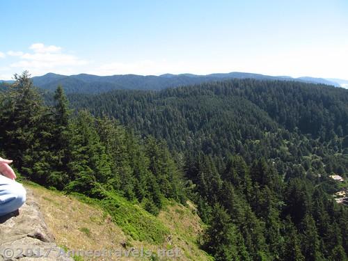 Mountains inland of Cape Perpetua, Oregon