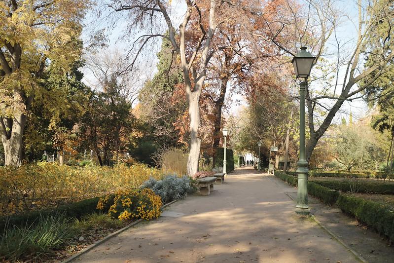 jardín botánico madrid
