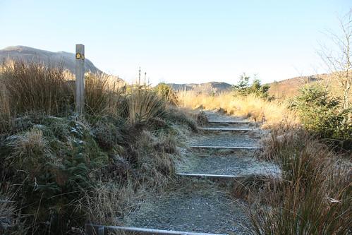 Not Roman steps