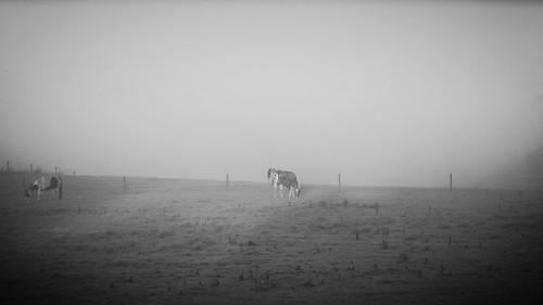Pastoral Landscape #2
