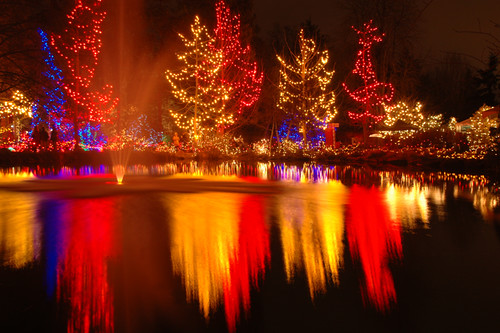 Christmas lights Van Dusen Gardens in Vancouver, Canada