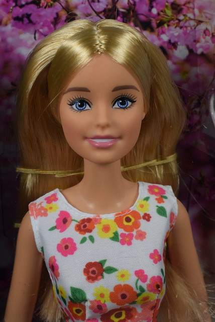 2016 Barbie The Look Park Pretty DVP55 (1)
