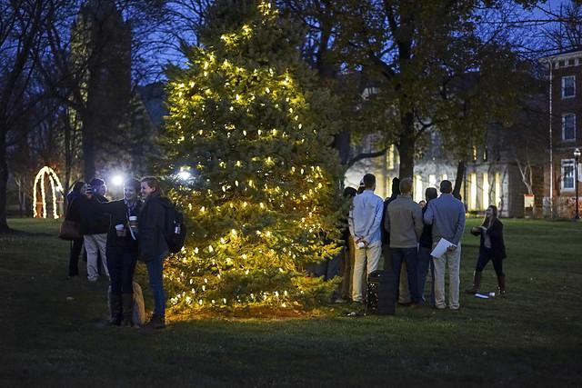 Hudler Tree Lighting