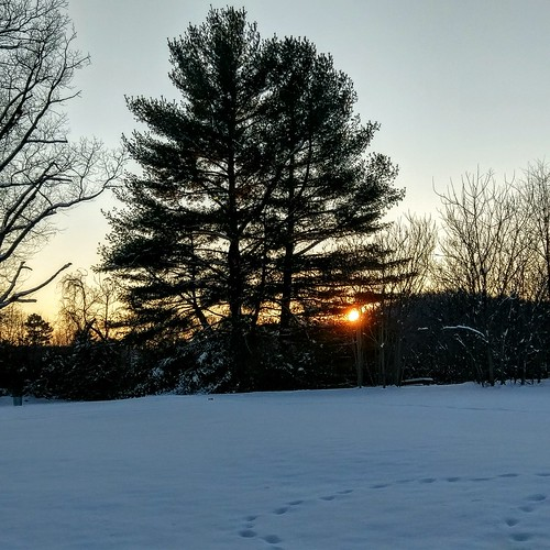 Sunset on the first snow of the year