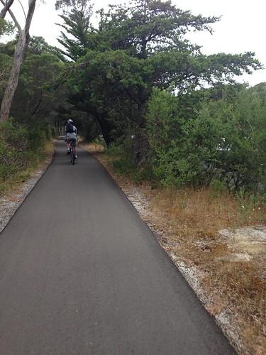 Bellarine Rail Trail near Queenscliff