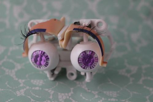 Lupinus eye mechanism