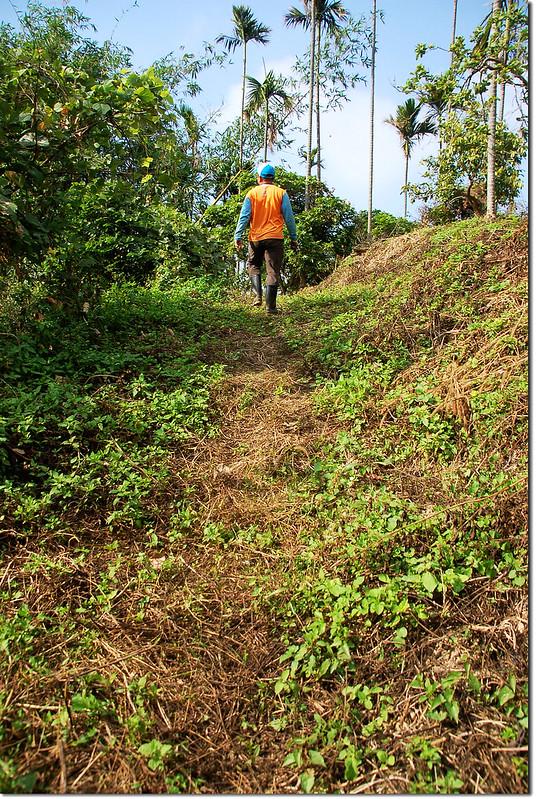 東麻竹湖山登山步道