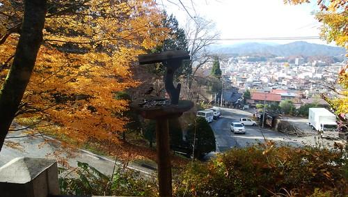 gifu-takayama-musashi-view