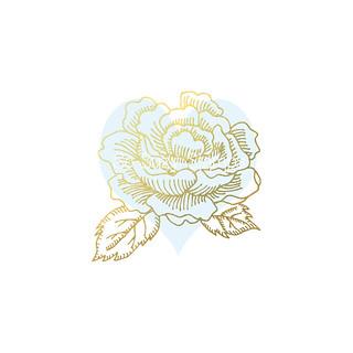 Rose_Bloom__74445.1481931802