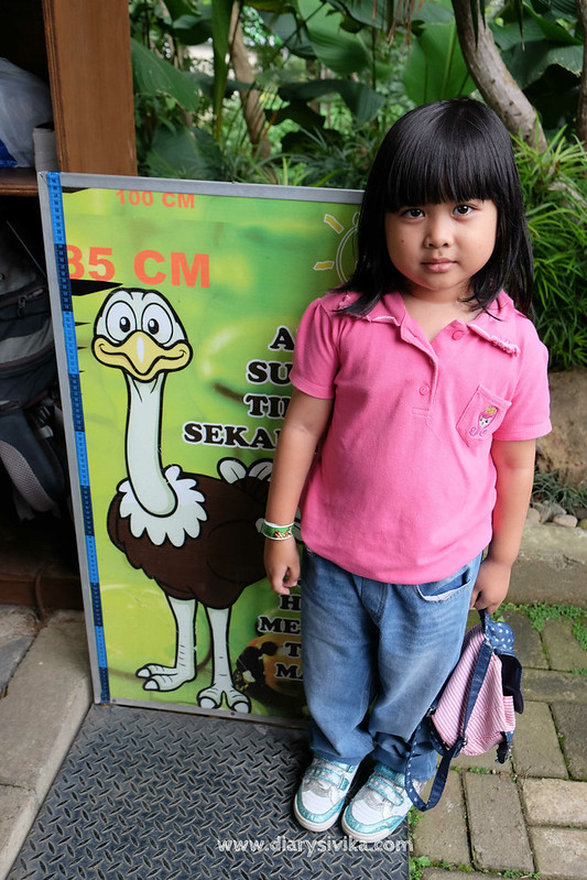 eco green park 4