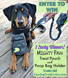 Mighty Paw giveaway