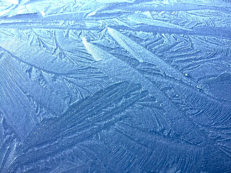Jack Frost in the morning