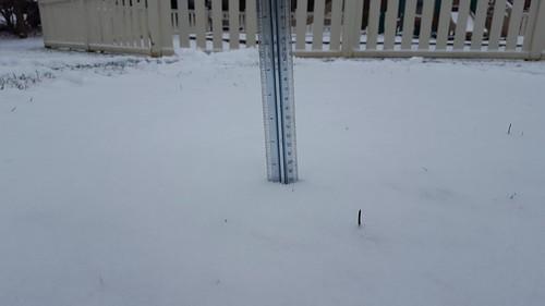 ALEXANDRIA, Va. - 1 inch of snow