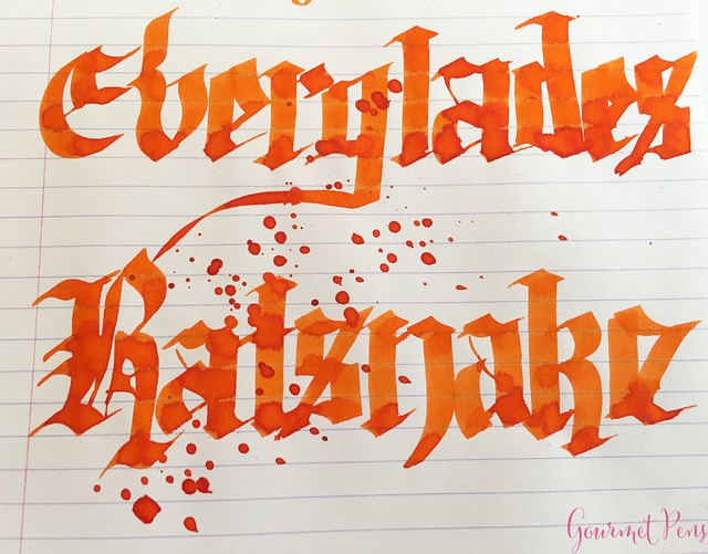 Ink Shot Review Bookbinders Everglades Ratsnake @AndersonPens 6