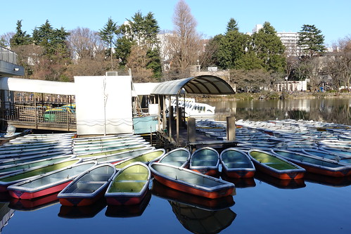 boats Inokashira Park 02