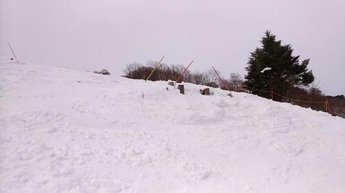女子リーゼンはコース解放してたけどブッシュが多くて滑れたもんじゃなかったので一度滑走したのみでパス