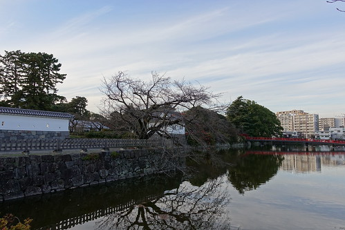 Odawara castle moat reflection