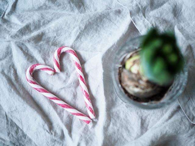 candy cane, heart, karkki keppi, sydän, sypressi, joulukukka, kukka lasissa, decor, decoration, koti, home, koristeet, koristella, inspiration, inspo, sisustus, joulu, christmas, sydän koriste, heart decor, tikkukaramelli,