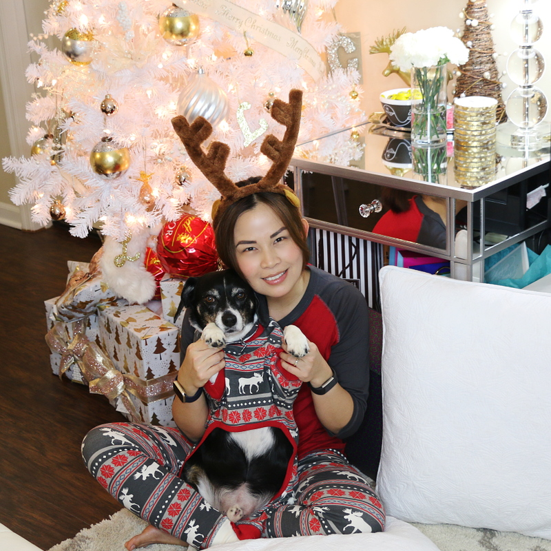 Christmas-pajamas-matching-dog-pets-2