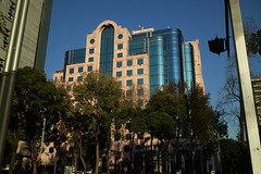Mexico City 043