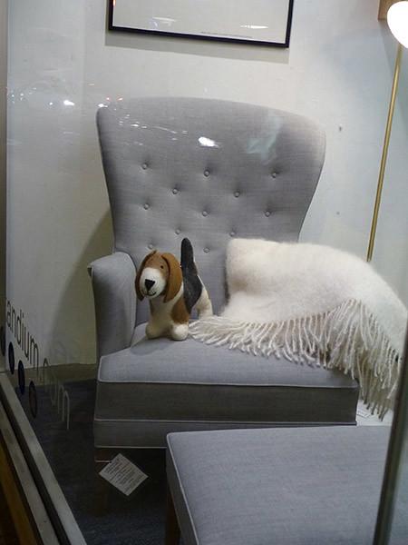 le chien sur le fauteuil