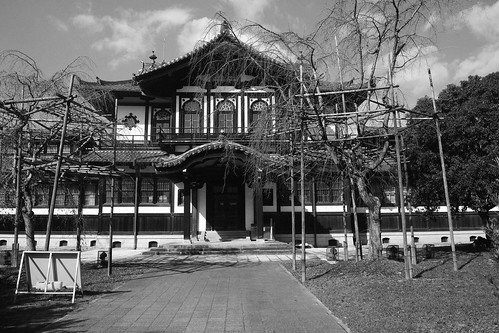 Nara on OCT 29, 2015 (9)