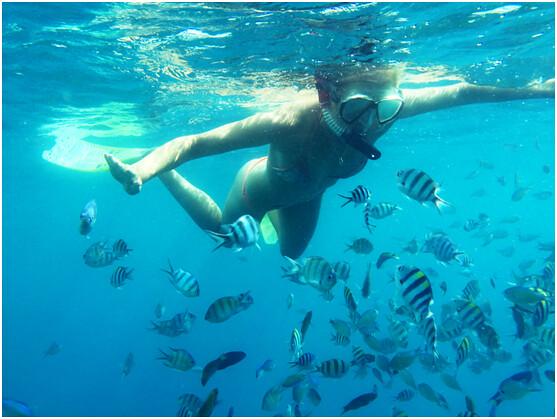 things to do in Zanzibar Island