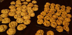 Fresh vs Canned Pumpkin Cookies