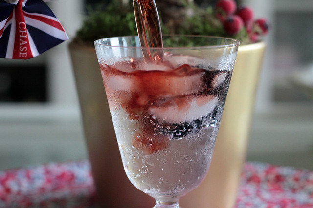 Williams Sloe Gin and Tonic