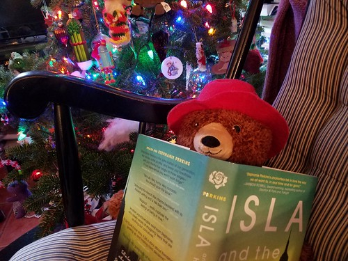 Paddington Reads by the Tree