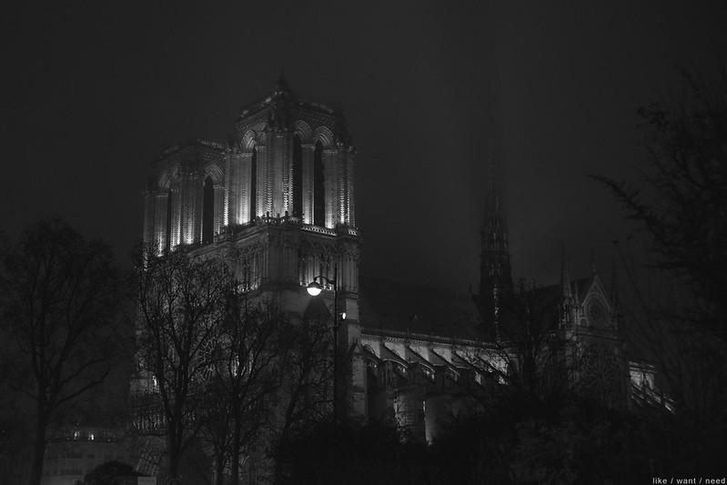 Notre Dame, night