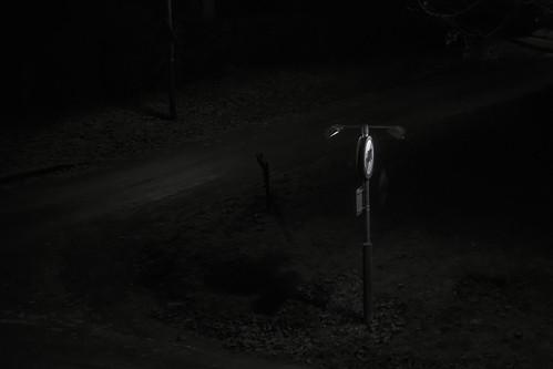 Nightfog - 04
