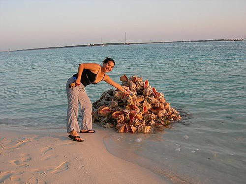 Brindisi_Conch_Pile | by islandmommy