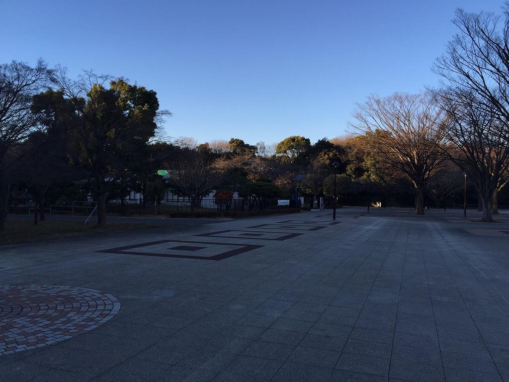 20161228_光が丘公園