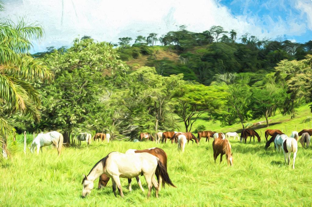 Il pastorale
