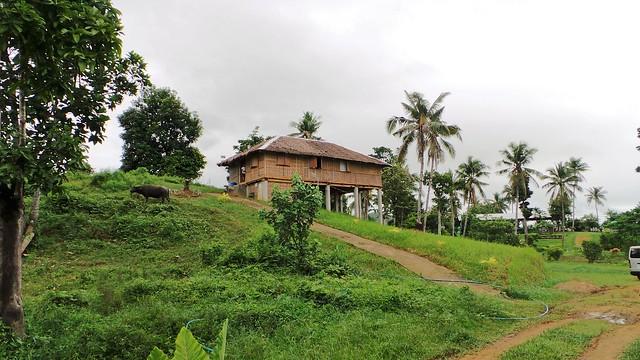 Accommodation-La-Granja-Reyna-Leyte