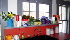 Kitchen Window Ledge Ideas