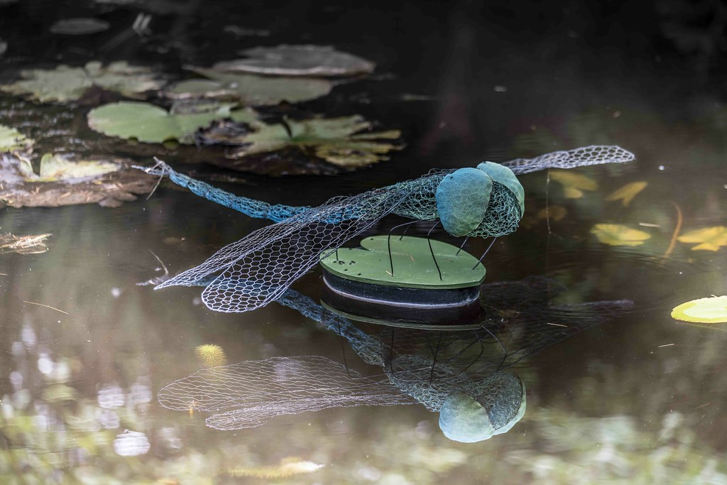 DRAGONFLY BY ANNE McGILL [SCULPTURE IN CONTEXT 2015]REF--10805356