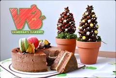凡內莎 聖誕蛋糕