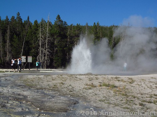 Sawmill Geyser in the Upper Geyser Basin of Yellowstone National Park, Wyoming